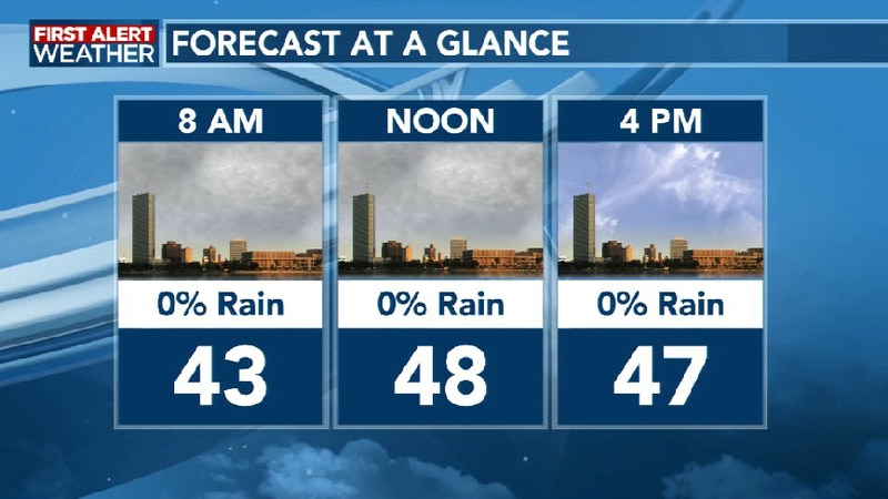 Forecast at a Glance