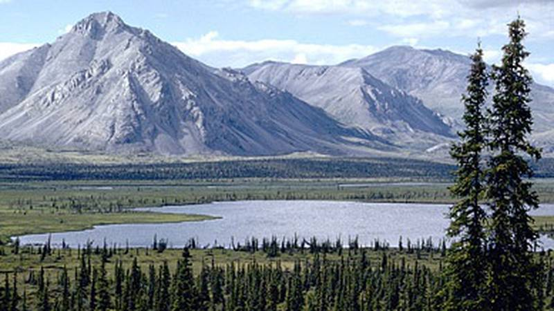Conservationists welcomed a new review but also called on Congress to repeal the provisions of...