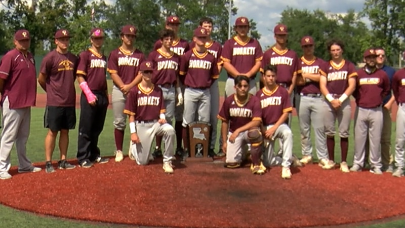 Hornets get outdone in the Class 1A State Championship
