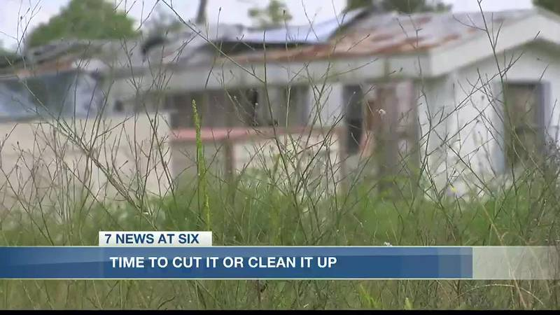 Tall grass and junk must eventually be cleaned up or property owners will pay more and possibly...