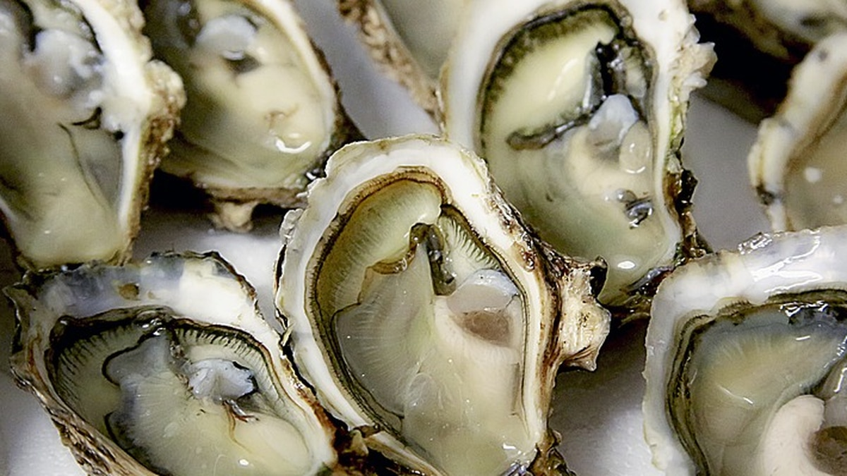 Oyster farmers are partnering with the Chesapeake Bay Foundation to have pop-up events serving...