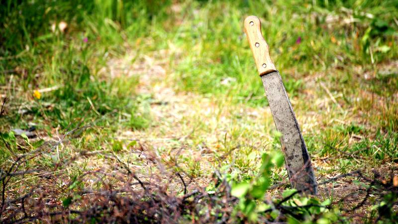 Armed with a machete, a Texas homeowner woke up and went outside after hearing glass breaking....