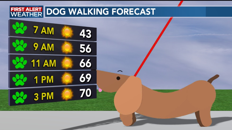 We see a perfect afternoon to walk the dog or enjoy the nice weather