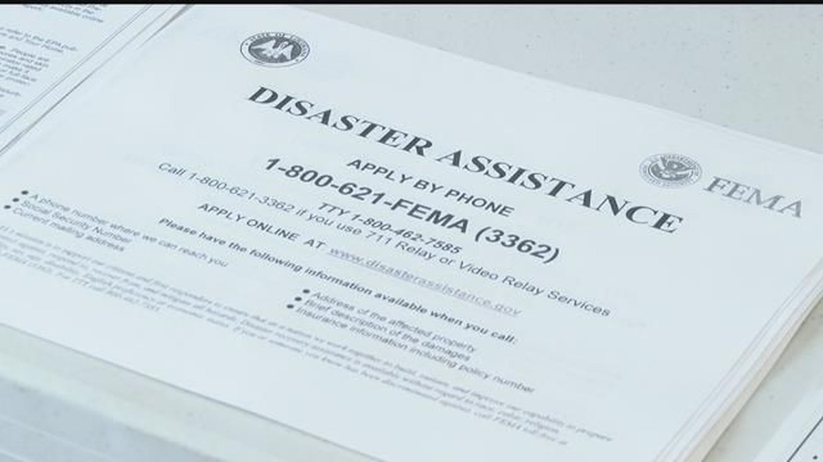 FEMA application (Source: KPLC)