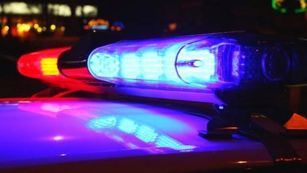 Police said these incidents are a result of self-proclaimed gangs from DeRidder, Leesville and...
