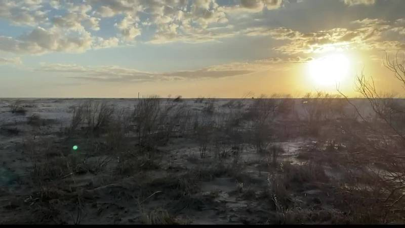 Cameron Parish making headway on Rutherford Beach storm recovery
