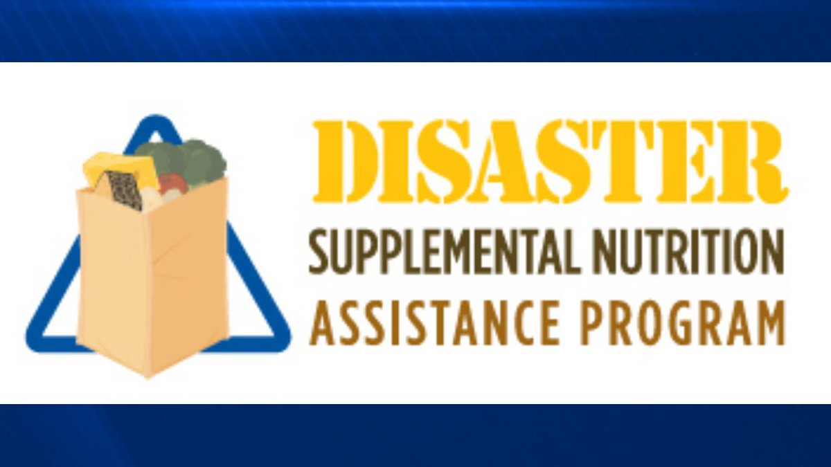 The DCFS says DSNAP applications will be accepted from Monday, June 21, to Friday, June 25, 2021.